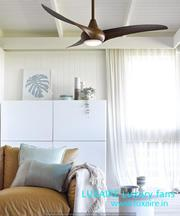 Luxury wooden fan